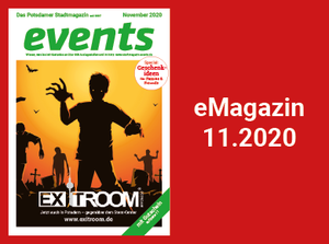 eMagazin 390x290 Pixel 2020.11